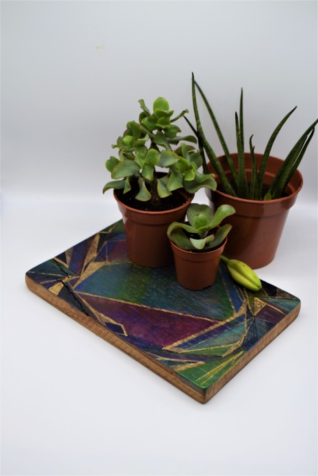 Kirsty Dalton- Board and plants